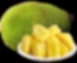 Jackfruit.png