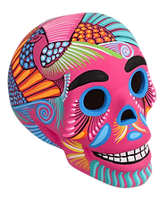 rosa skull.png