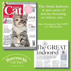 Your Cat Part 1 February 2019 The Great