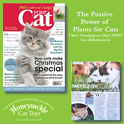 Your Cat Part 11 December 2019 Plants.pn