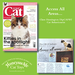Your Cat Part 8 September 2019 Access Al
