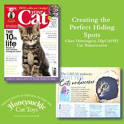 Your Cat Part 10 October 2019 Hiding.png