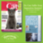 Your Cat Part 1 May 2020 Separation Anxi
