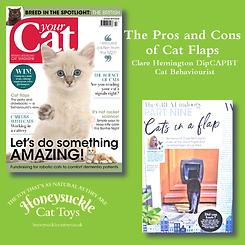 Your Cat Part 9 October 2019 Cat Flaps.p