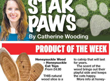 Honeysuckle Cat Toys Star Product!
