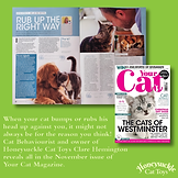 Your Cat Magazine Nov 2020 Rubbing.png