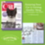 Your Cat Part 7 August 2019 Beds and Sle