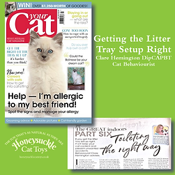 Your Cat Part 6 July 2019 Litter Tray Se