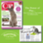 Your Cat Part 2 March 2019 The Power of