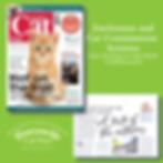 Your Cat Part 5 June 2019 Enclosures.png
