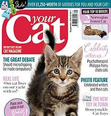 Front cover of Your Cat Magazine Sept 2018 showing tabby kitten and text relating to the edition's features