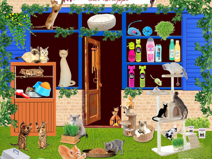 A Cat Behaviourist Guide to Buying Cat Products