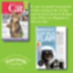 Your Cat Part 2 June 2020 Cat Flaps.png