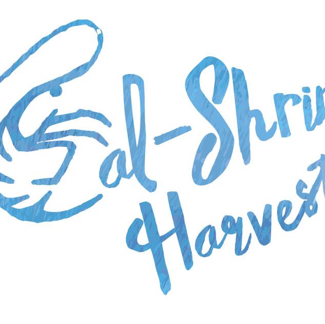 Cal Shrimp Harvest