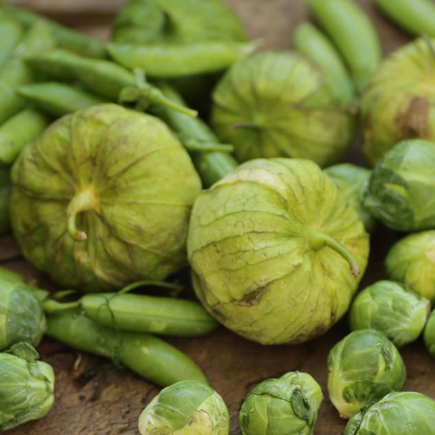 Tomatillos and Green Beans