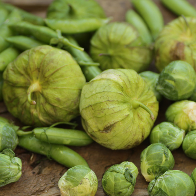 Tomatillos and Green Beans