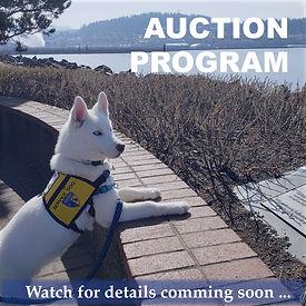 Brigadoon Auction Page Photos-1.jpg
