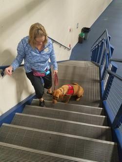 Bravo on scary stairs