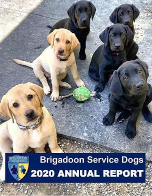 2021 Brigadoon Annual Report.jpg