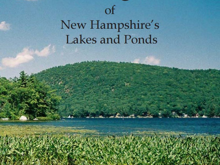 Aquatic Plant and Algae of New Hampshire's Lakes and Ponds - Amy P. Smagula and Jody Connor -NH DES