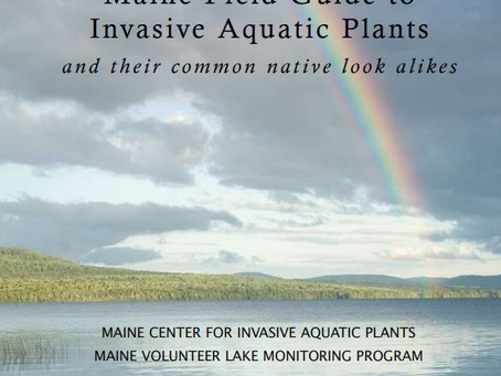 Maine Field Guide to Invasive Aquatic Plants and their common native look alikes
