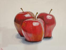 fresh apples kerry o'brien