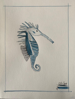 seahorse on holiday michele peryer