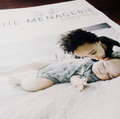 Baby and Family Shoot Newspaper
