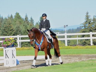 2016 ODS Open and Championship Show on September 9-11th at DevonWood Equestrian Centre