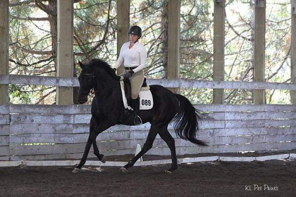 Amber and Cash killing it at this October 2018 dressage schooling show.  All blues and scores in the 70+%!