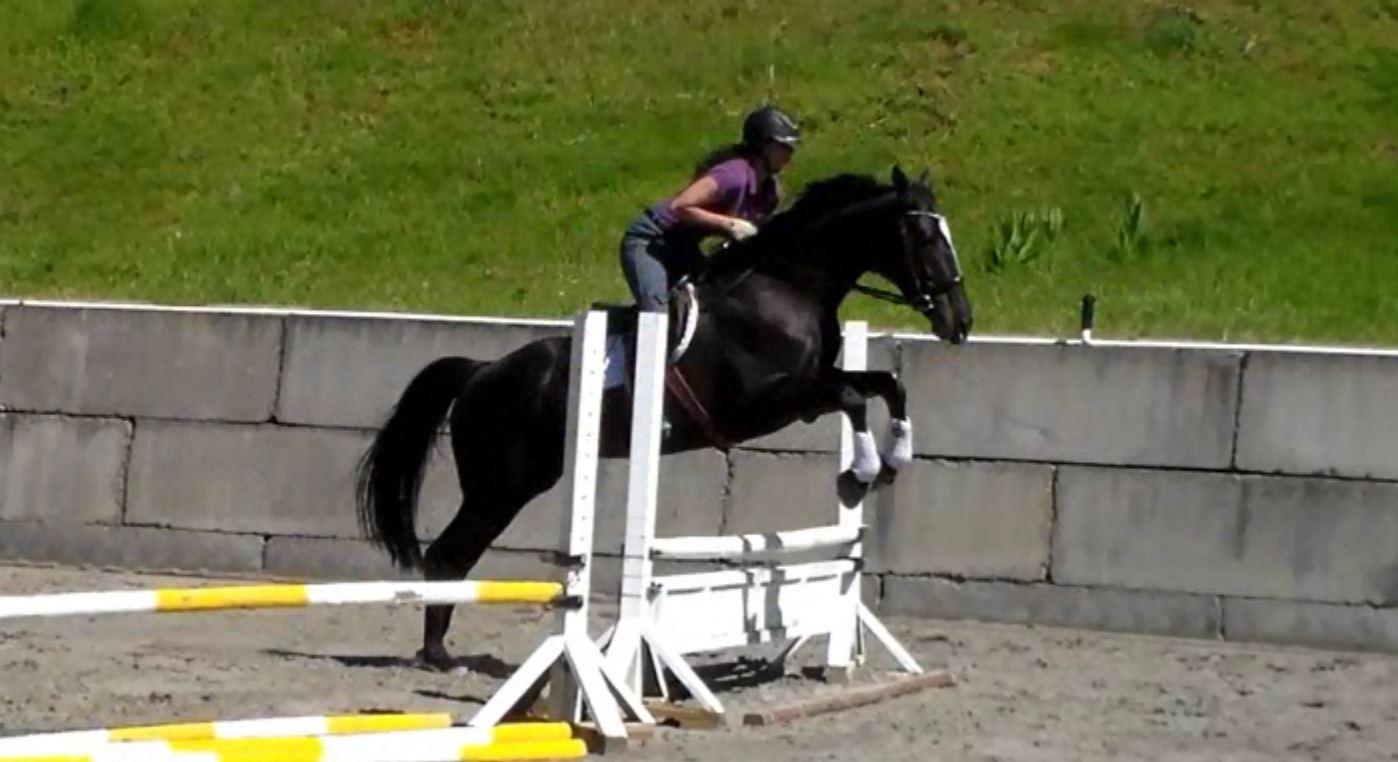 Sloane jump 2