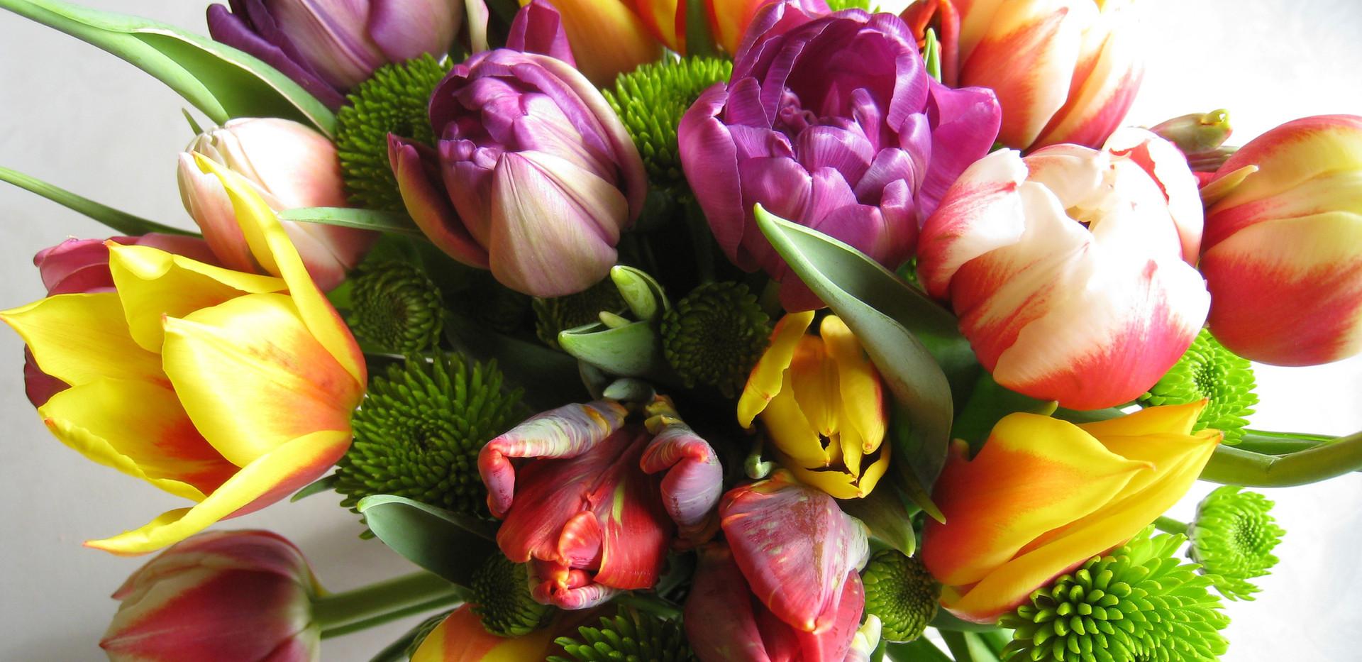 Tulip mix hand tied