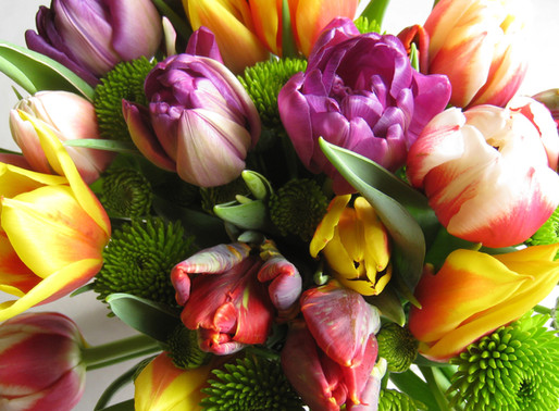Retail Floristry Course Fingal Adult Education Service
