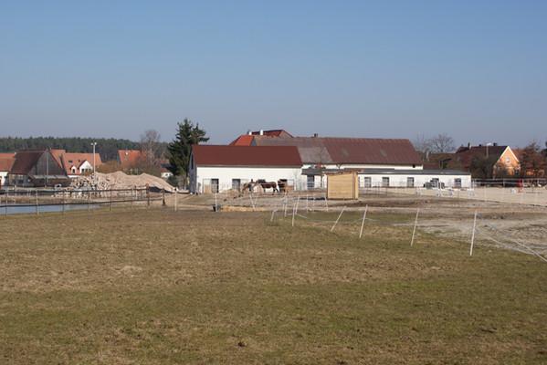 2011-a961.jpg