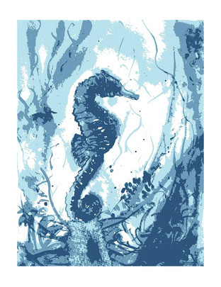 sea-horse-1.jpg