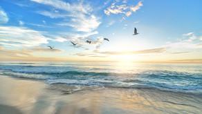 Listen to My White Light Meditation and Visualization on InsightTimer