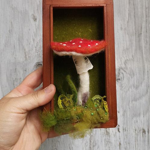 Mushroom in a box.