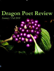 summer-fall-2018-dragon-poet-review.jpg