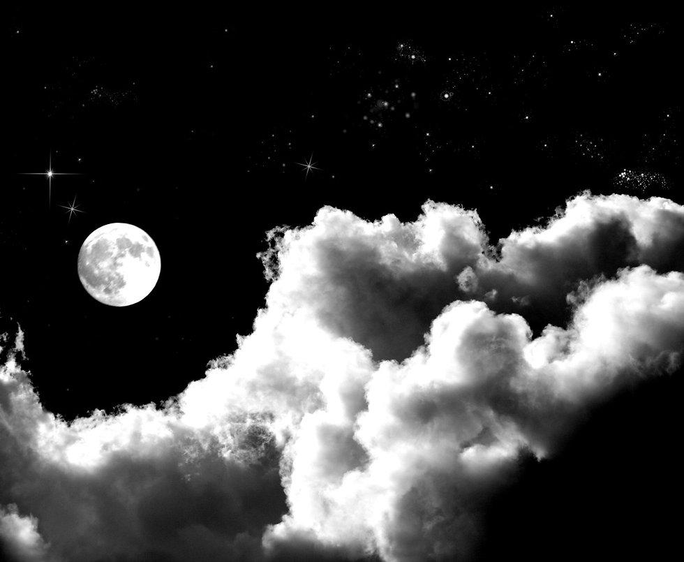 Moonlit Night_edited.jpg