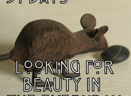 31 Day of Looking for Beauty in the Everyday