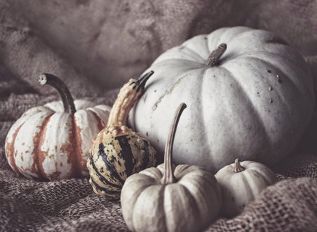 Fall gourds. Still Life Photography.