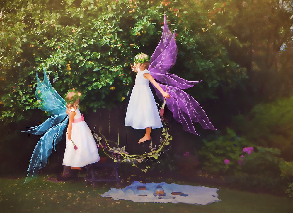 Two fairies painting apples a rosy red, helping them to ripen in time to harvest.
