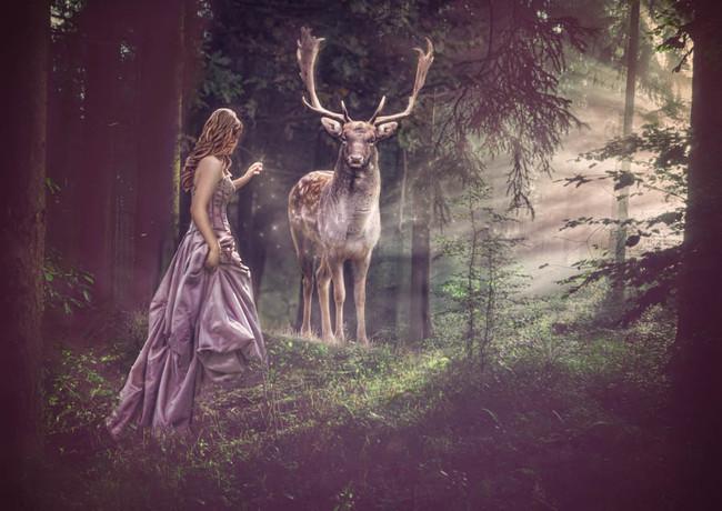 A Forest Tale_RosaVeldkamp.jpg