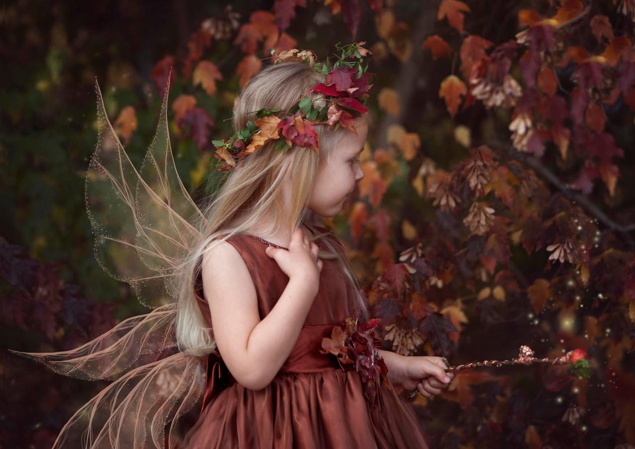 Amelia Autumn Fairy-rosa_veldkamp-w.jpg