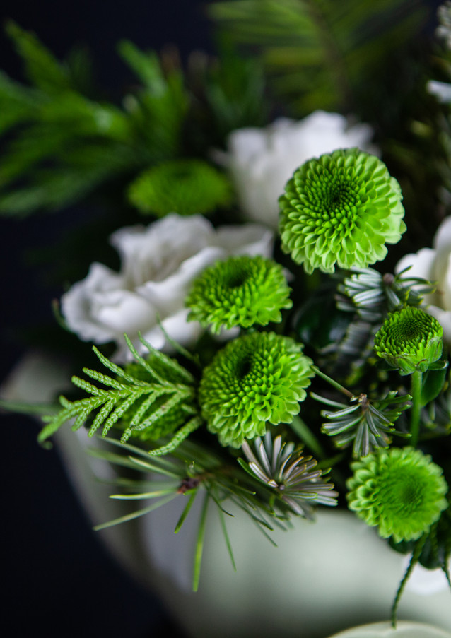 Green and white flowers-portrait-rosa-ve