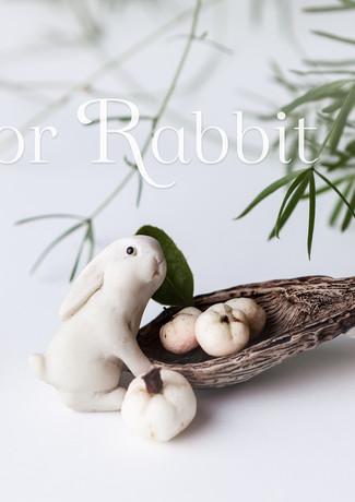 R for Rabbit-rosa_veldkamp-1.jpg