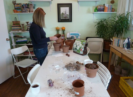 Planning For Early Spring. . . By Forcing Bulbs Indoors