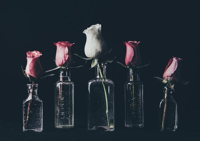 G for group of glass_rosa_veldkamp-1.jpg