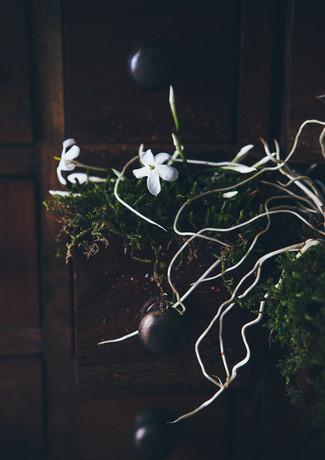 J for jasmine- portrait wide-rosa_veldka