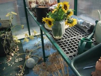 Fall Harvest and a Hiatus